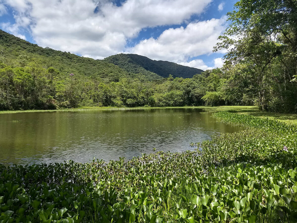 lagoa parque das nascentes
