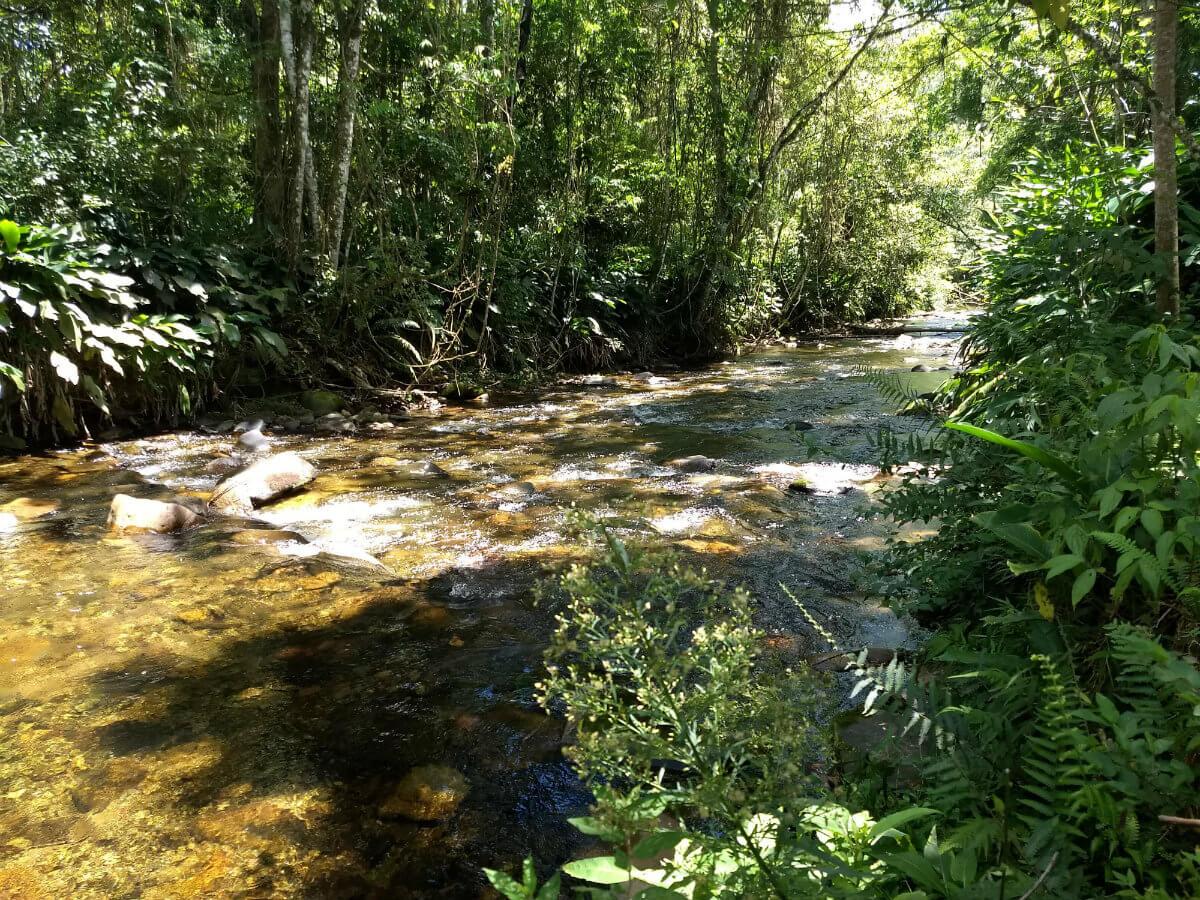 parque das nascentes riacho